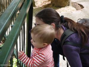 Little Miss Sunshine et Maman au Zoo