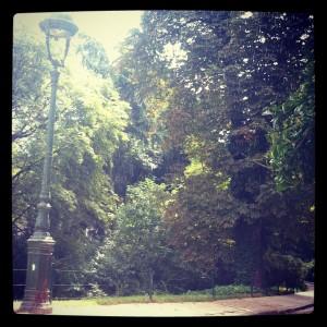 Promenade au parc sous un orage d'été