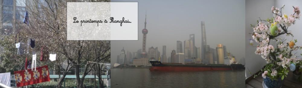 La famille Kangourou en Chine